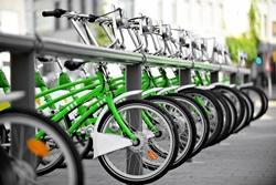 bike rental company